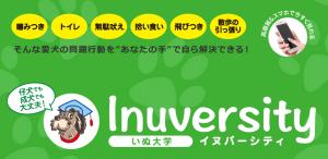 Inuversity_dog_2